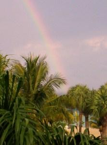 Jamaican Rainbow: Steve Piscitelli