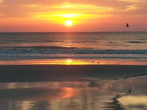 Atlantic Beach at Sunrise (Steve Piscitelli)