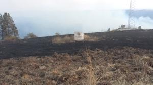 Robin and Chris's burned acreage.